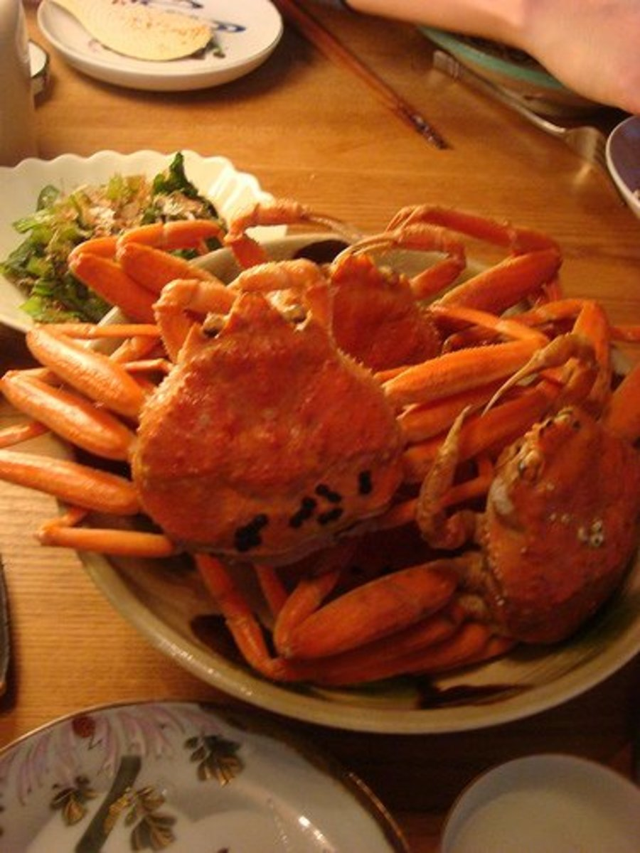 Southern tanner crabs