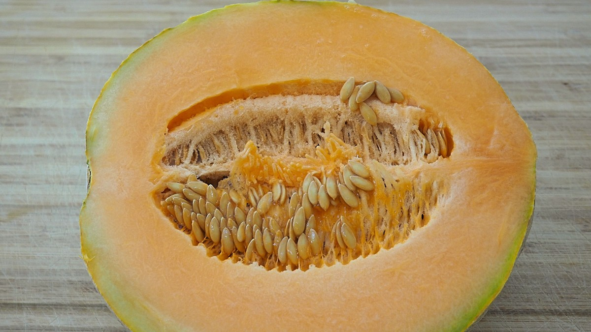 Did you know that cantaloupe seeds are edible? When dry roasted, they make a popular snack in many parts of the world.