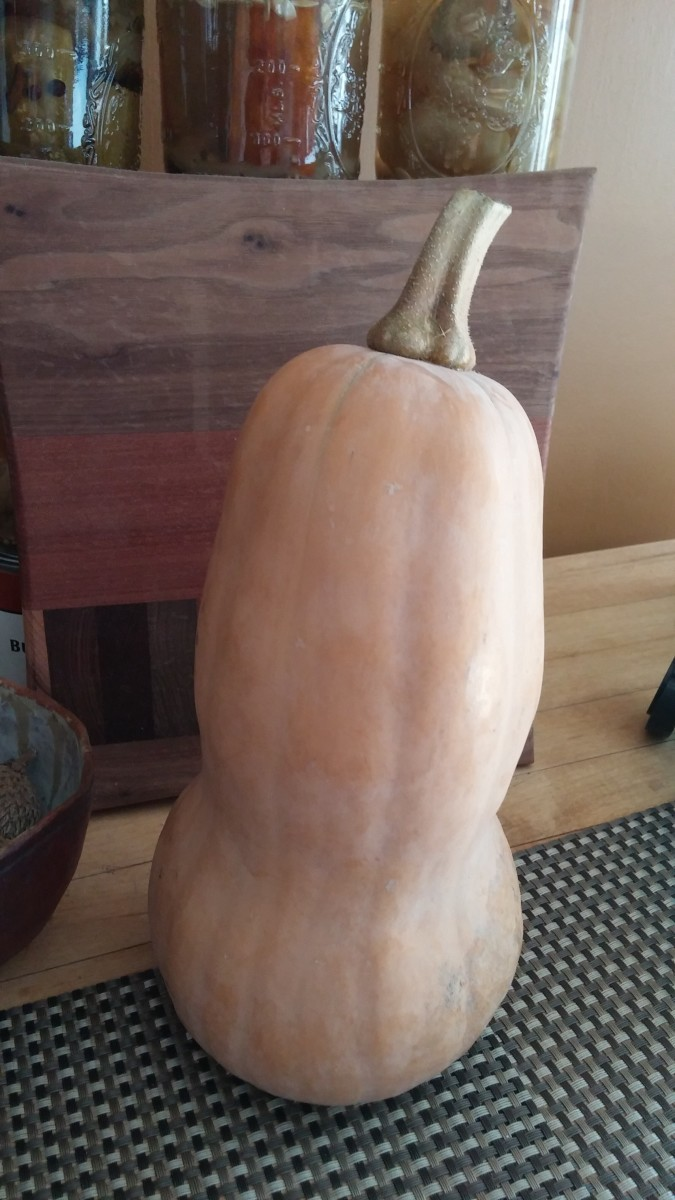 Butternut squash is a healthy alternative to potatoes and is filled with nutrients.