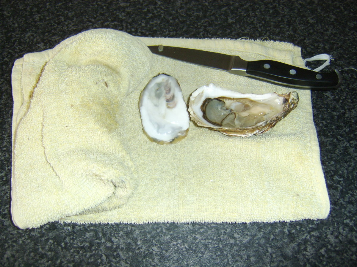 A Shucked Oyster