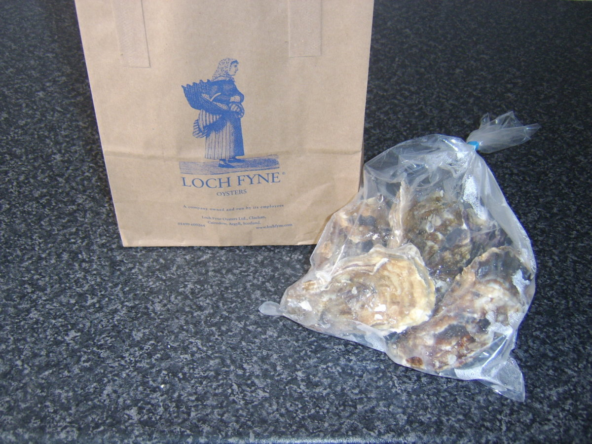 Fresh Oysters bought from the Loch Fyne Oyster Bar