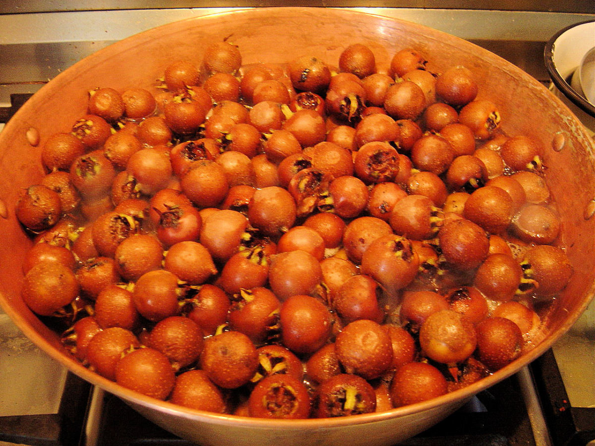 Simmer medlars until soft