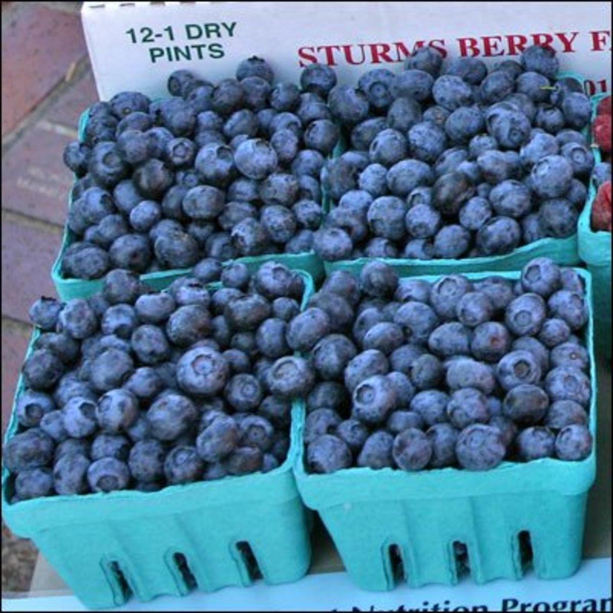 Juicy blueberries