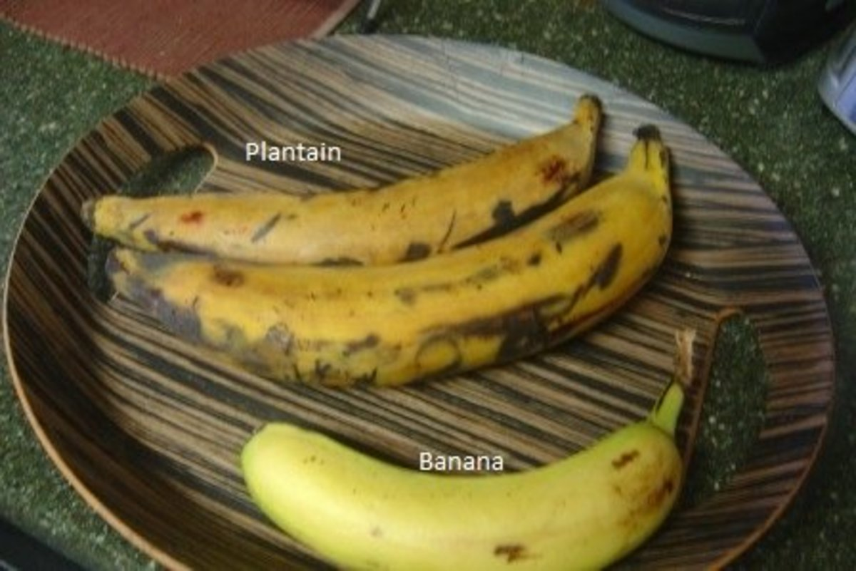 Plantains are usually bigger and thicker skinned than bananas.