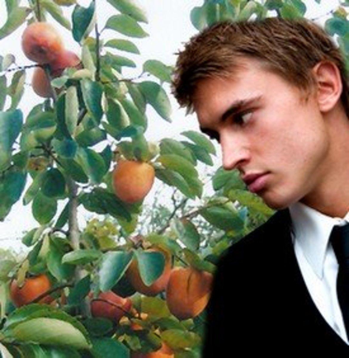 I don't trust those fruits!