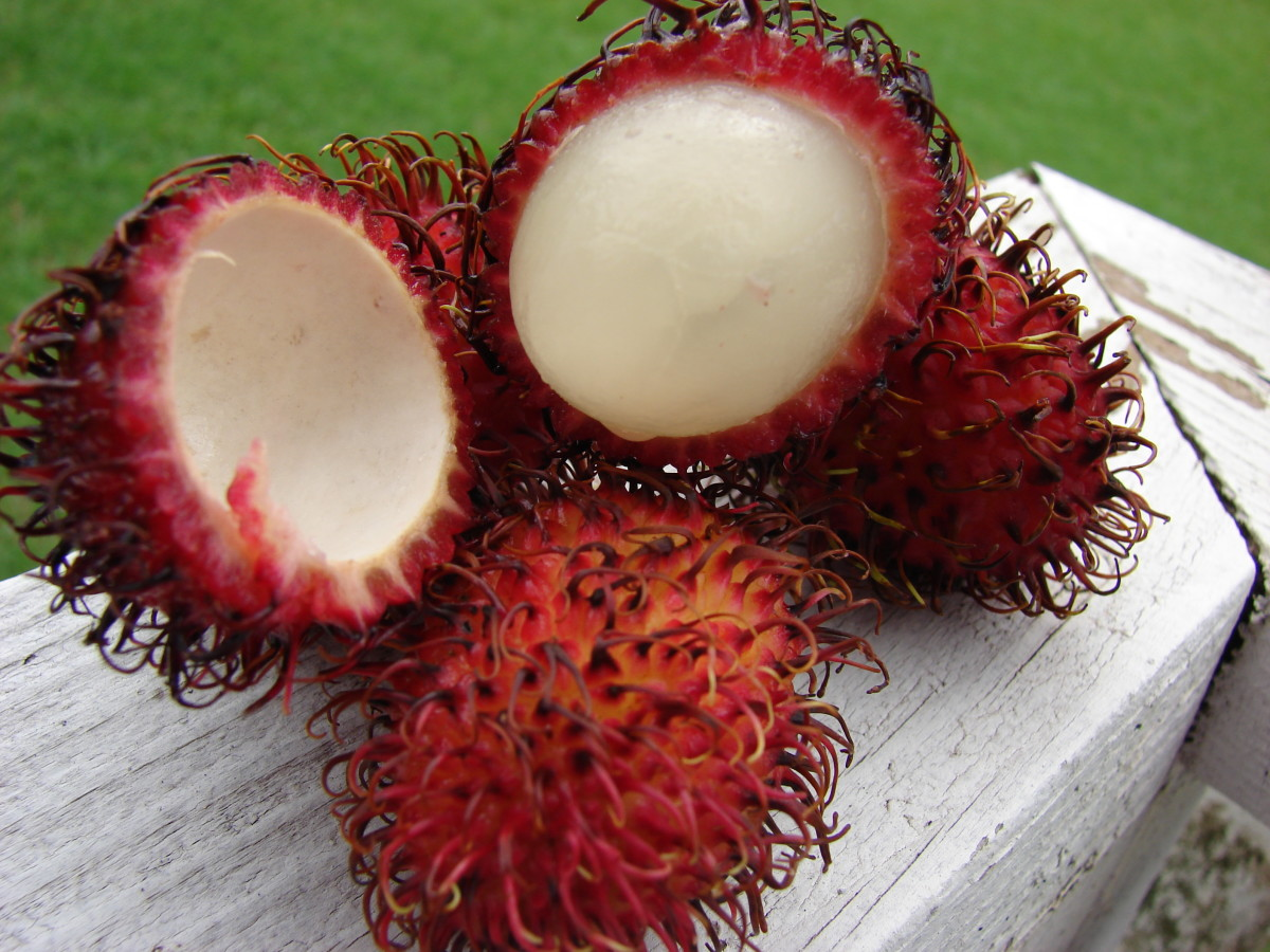 A rambutan sliced open to show the edible flesh inside.