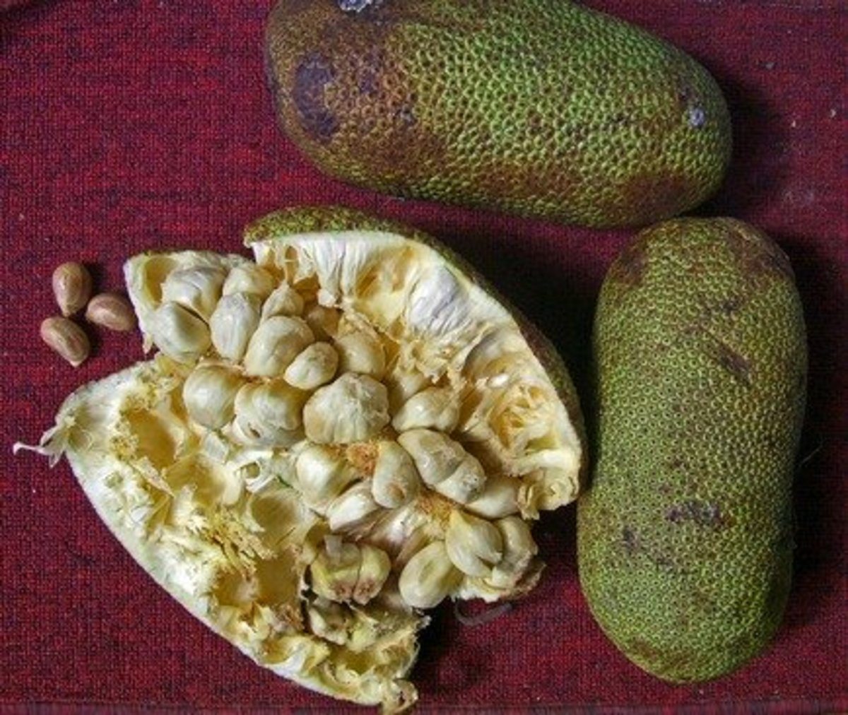 Cempedak fruit, sliced and whole.
