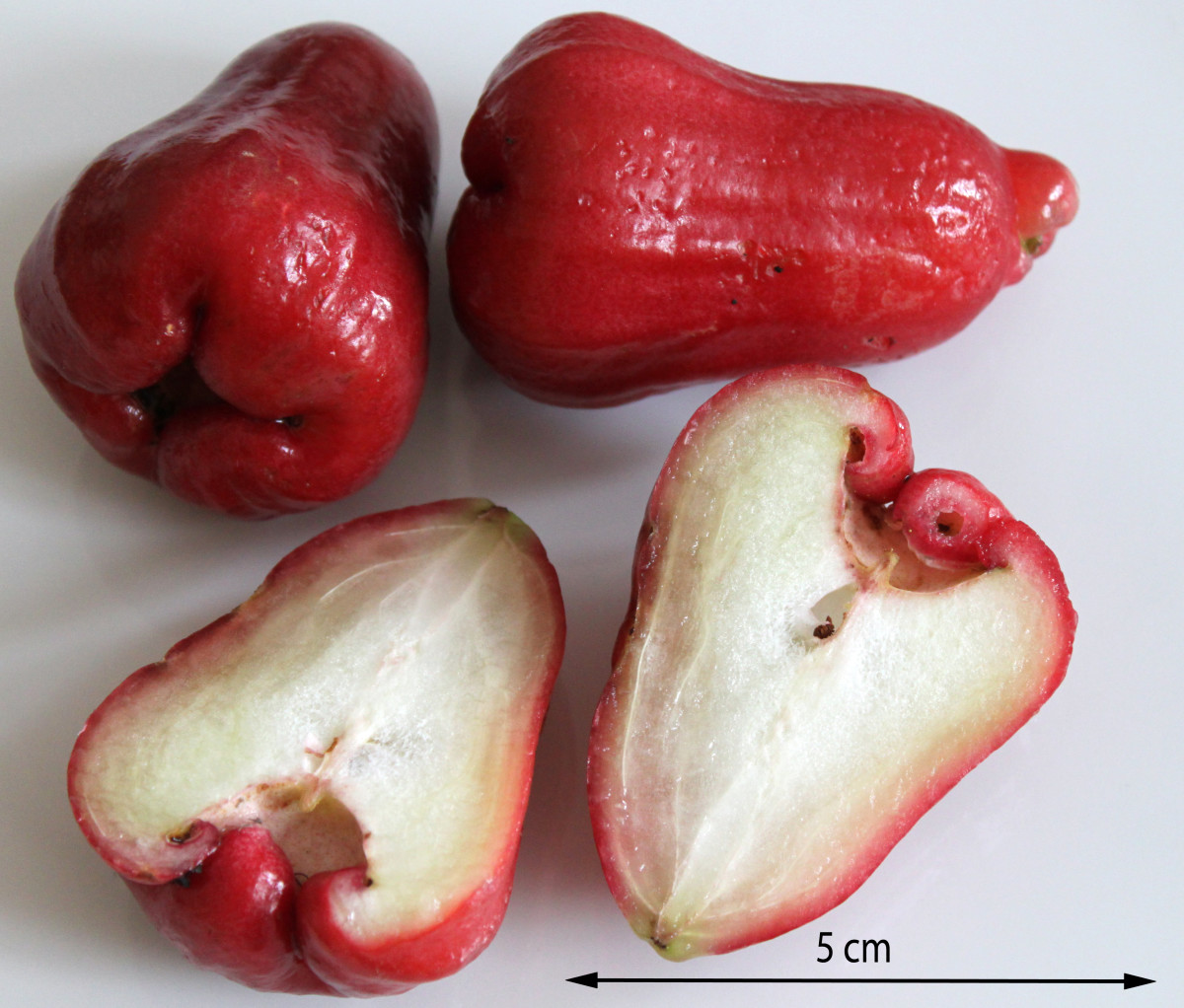 Honey apples, or jambu madu, come in many shapes, colors, and sizes.