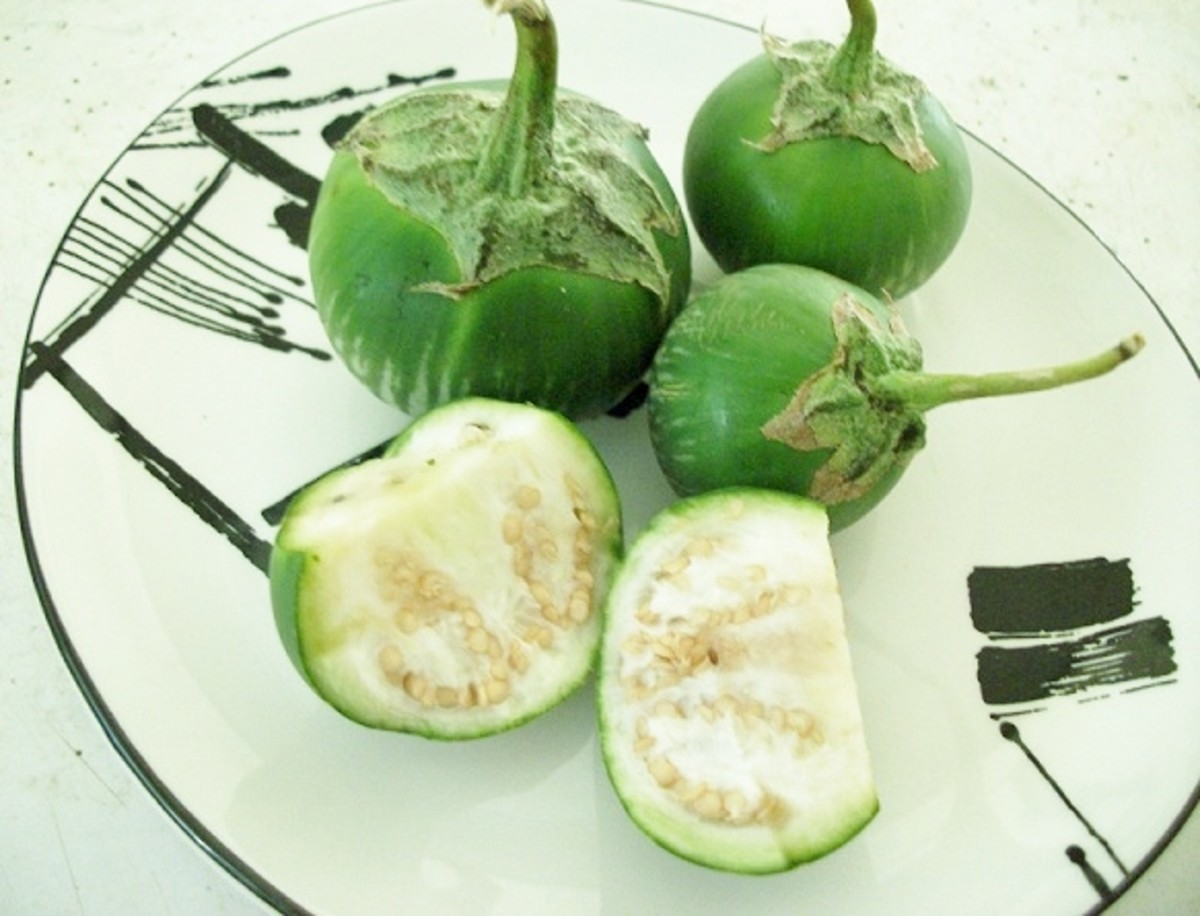 Thai eggplants are small and round and are often eaten raw.