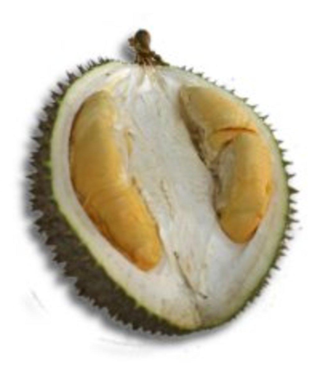Hybrid Ang Heh