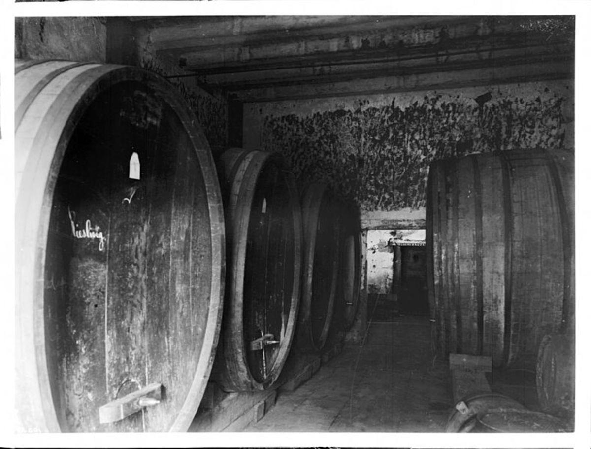 Casks of Wine in Wine Cellar
