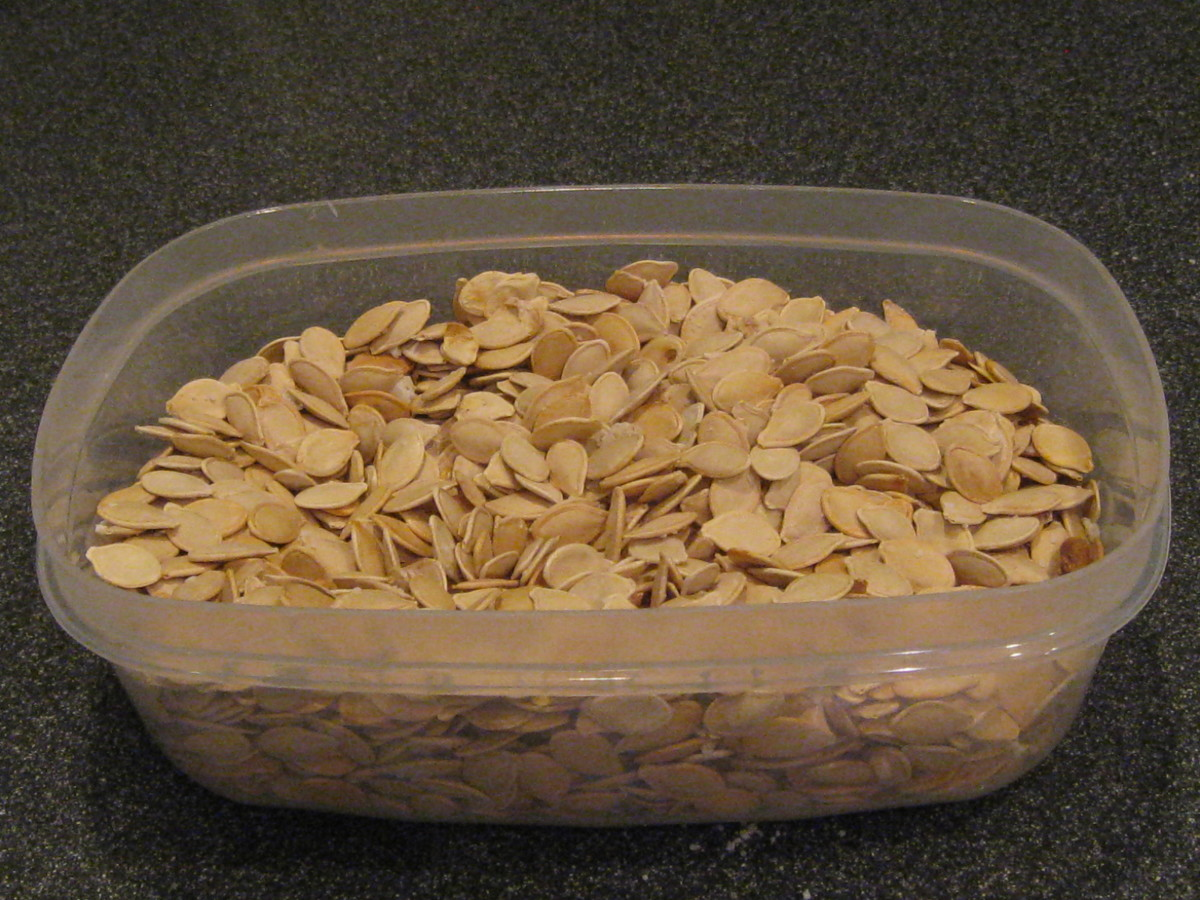 Tasty pumpkin seeds!
