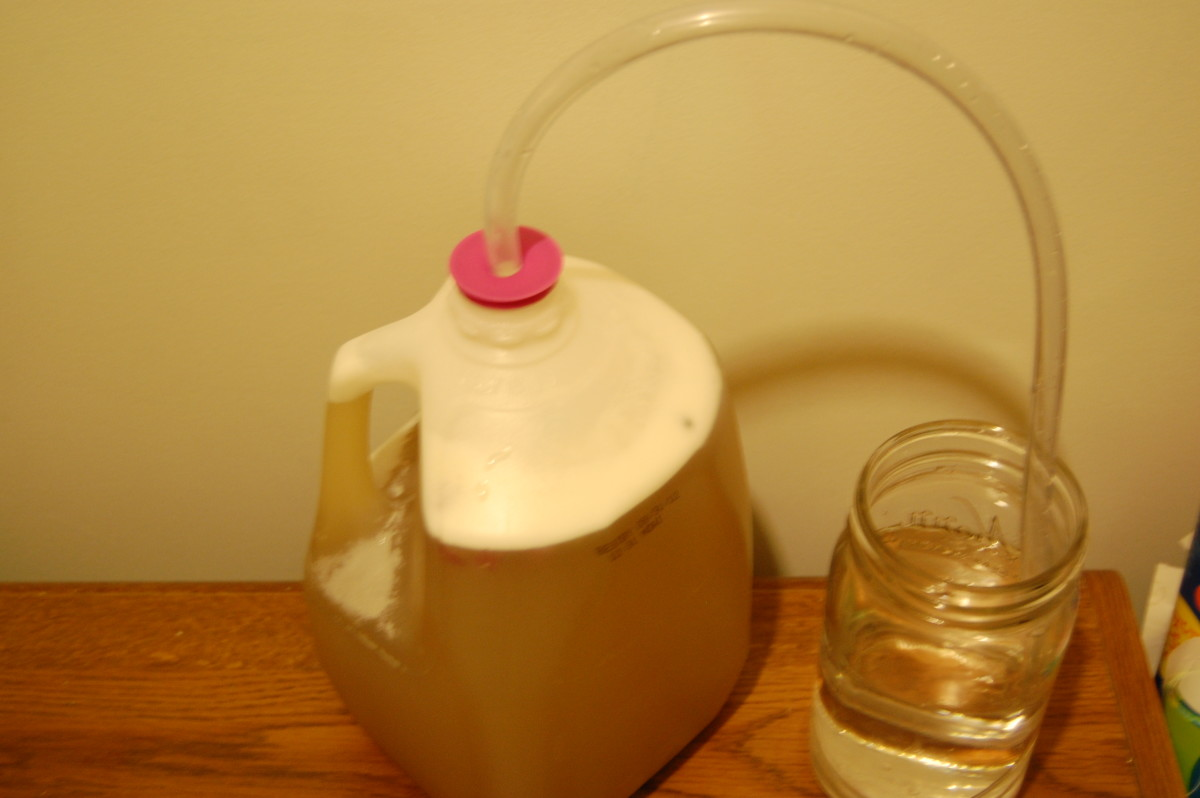 Placing the other end of the plastic tubing in a cup or mason jar filled half-way with water allows gasses to escape without letting anything back in,