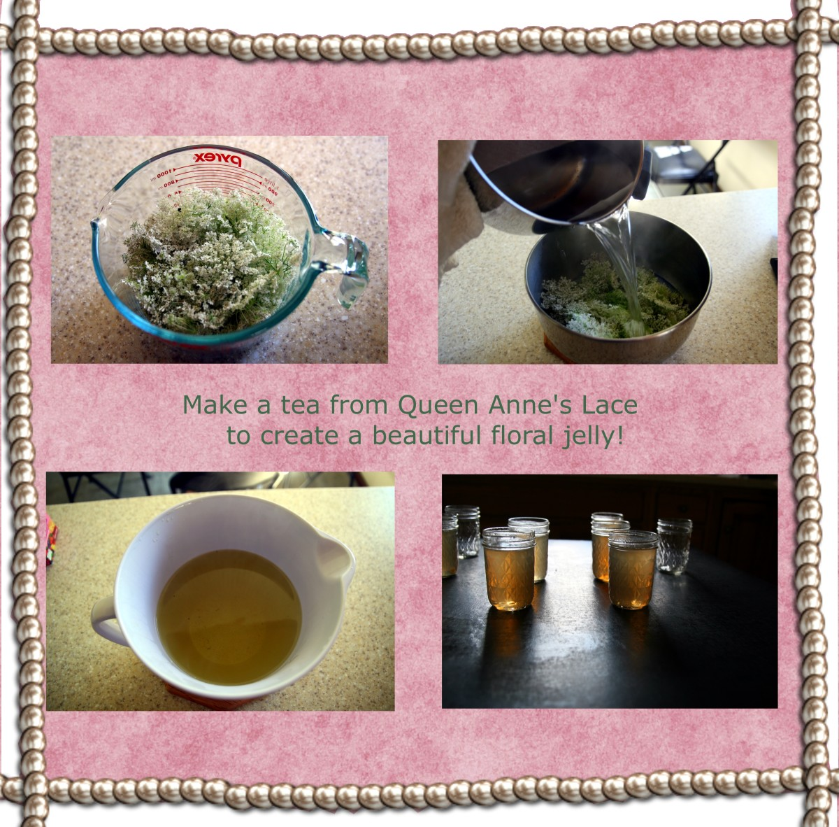 Add boiling water to the flowers to create a tea from Queen Anne's Lace: this tea creates the base for the jelly (click to enlarge).