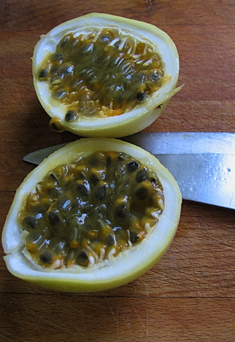 maracuja or passion fruit