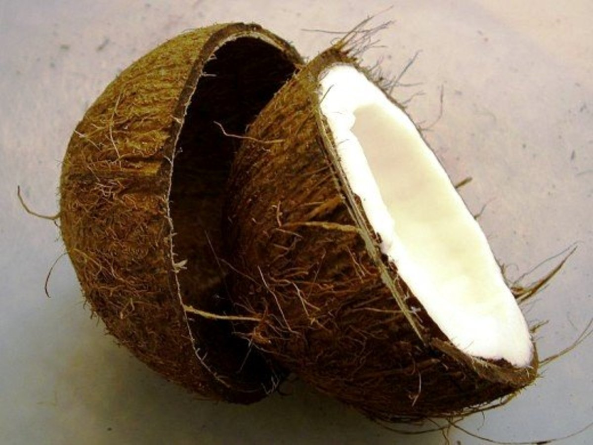 Coconut neatly cracked in half.
