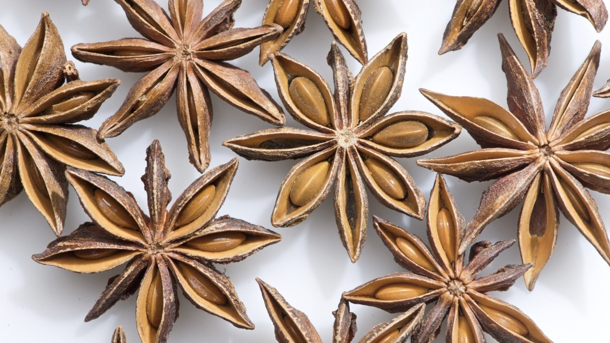 "Star anise fruits; each ""petal"" of the fruit contains a seed"