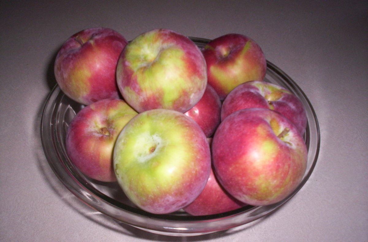Best Apples for Cooking