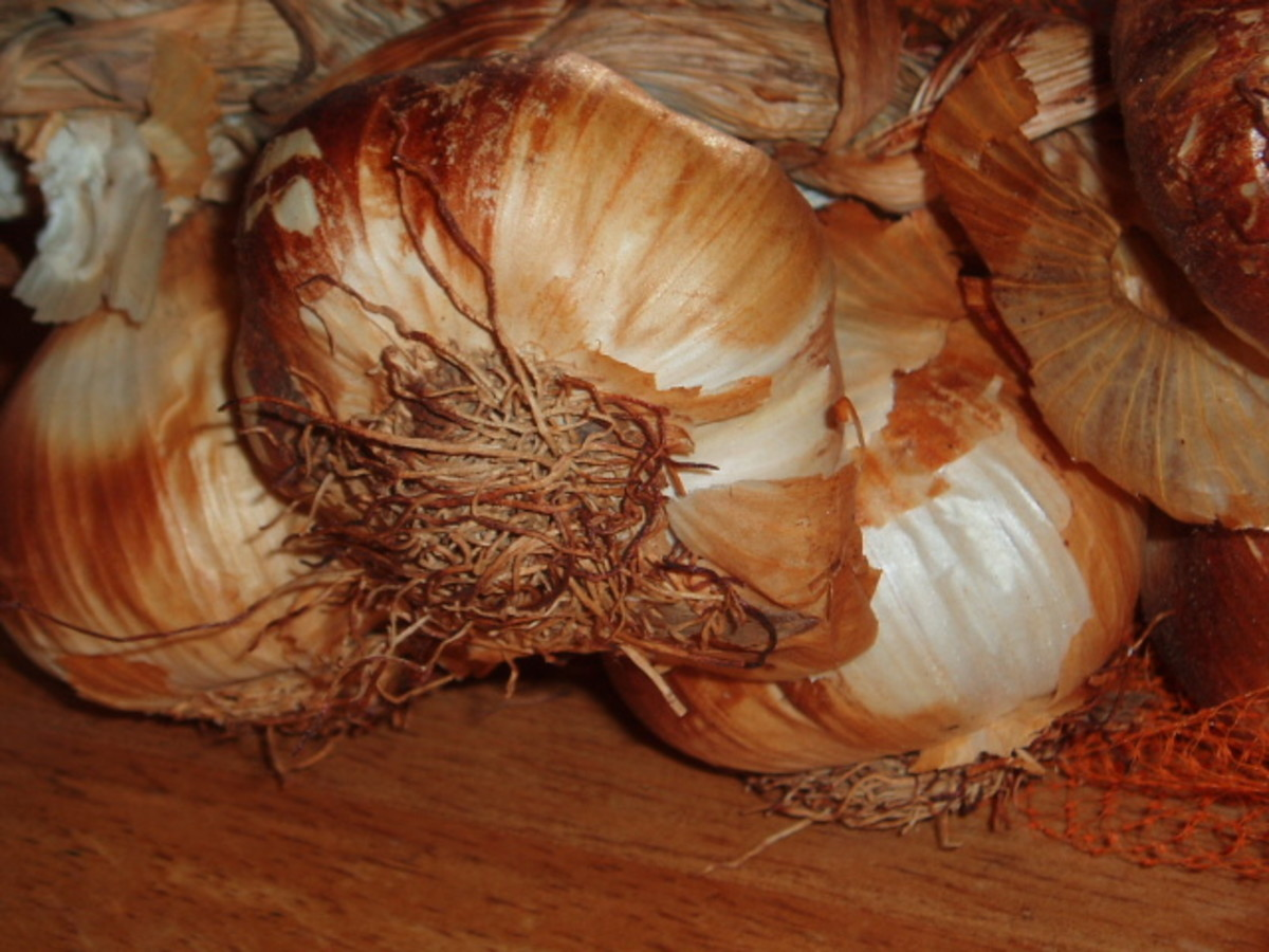 smoked garlic... use them for extra flavour