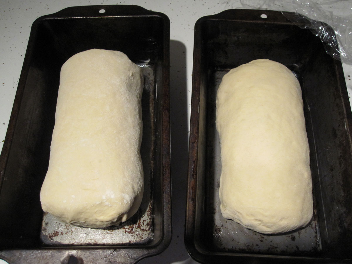 Shaped loaves in greased loaf pans.
