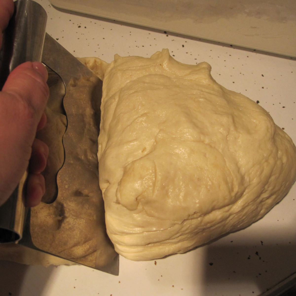 Dividing the dough using the bench scraper.