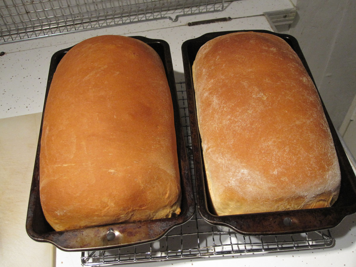Finished loaves of homemade bread.