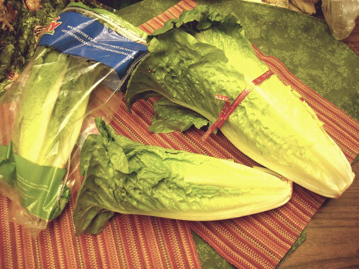 One head of Romaine lettuce vs. three packaged Romaine hearts.
