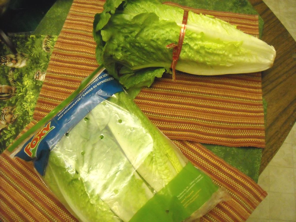 One head of romaine lettuce vs. a package of thre romaine hearts.