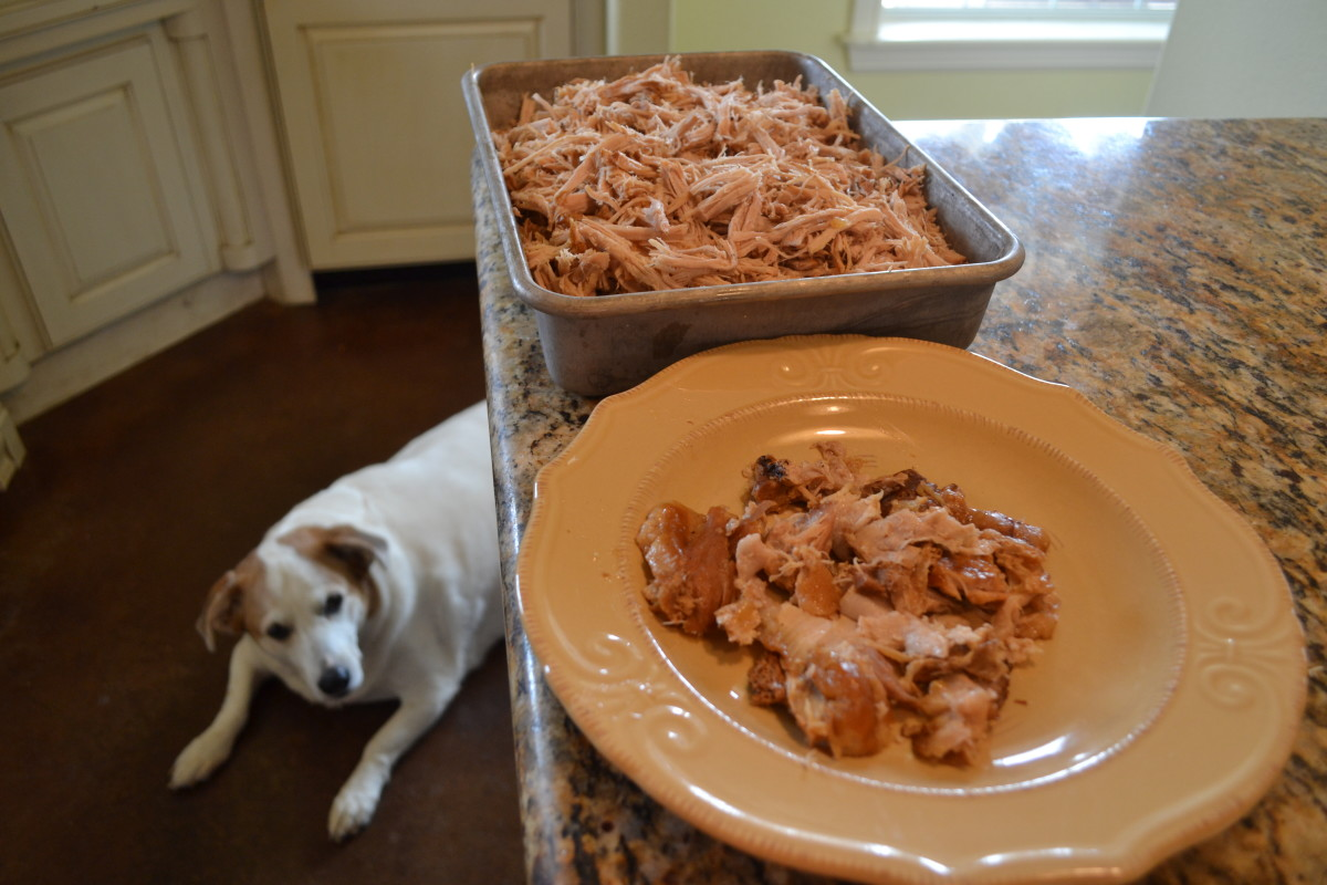 Puppy hopes for a bite to fall! As you can see by the small amount of fat and skin on the plate, pork loin is very lean. The meat might seem dry, but sauce and broth will take care of any dryness.