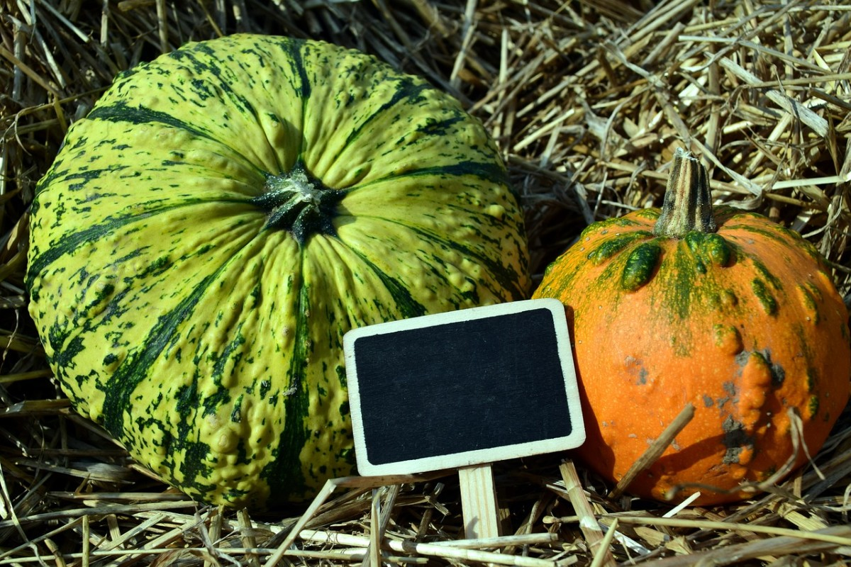 Squash is a nutritious fruit used in Filipino cuisine.