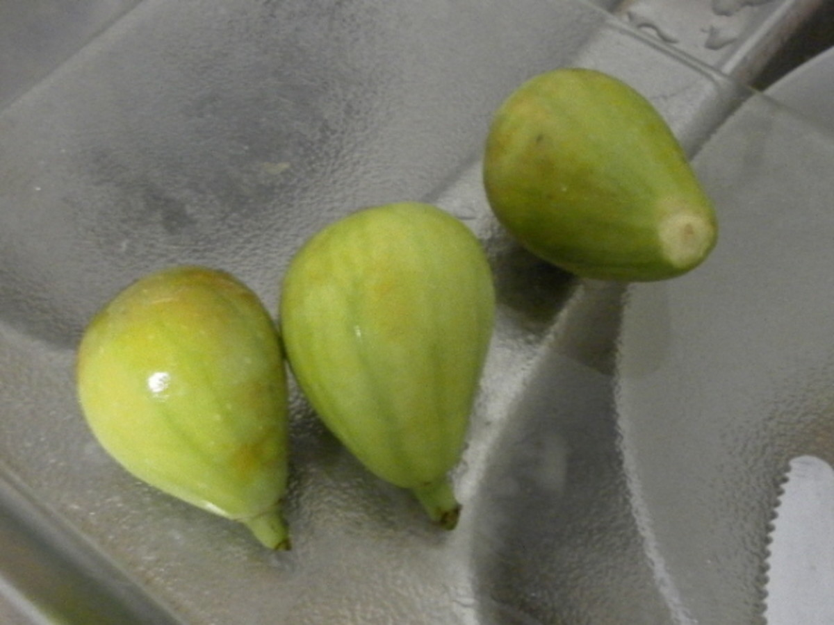 Washed figs ready to be cut.