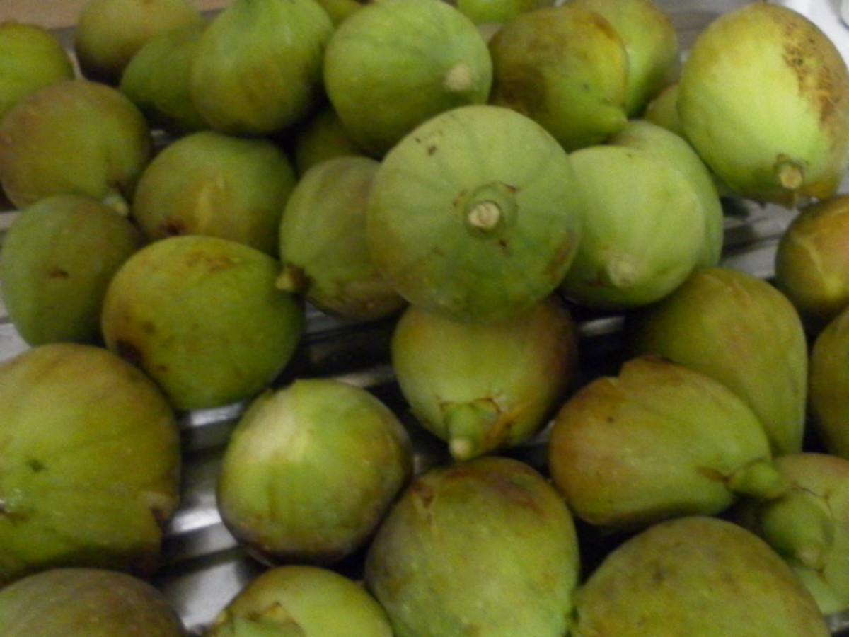 how to make dehydrated figs
