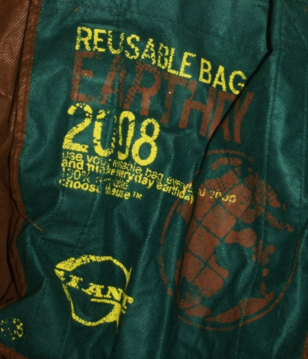 My 2008 Earth Day reusable grocery bag--still going strong!