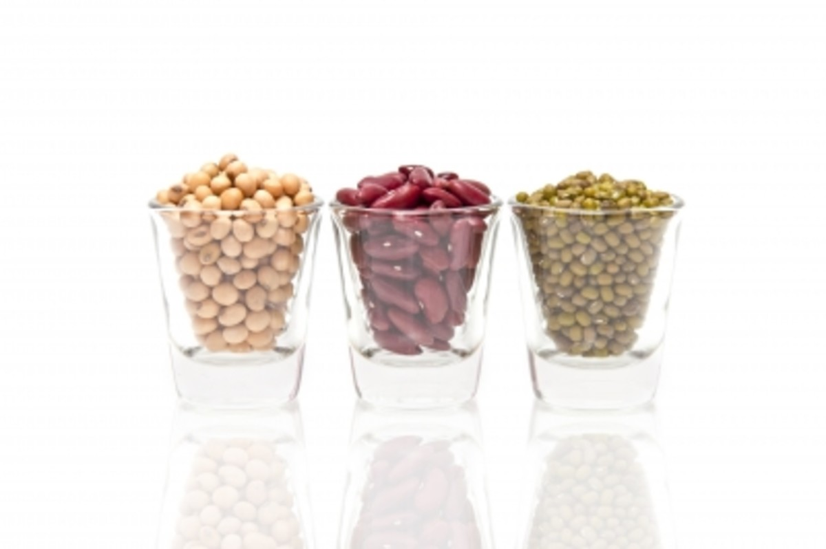 Legumes provide a nice variety of flavors when seeking a protein source.