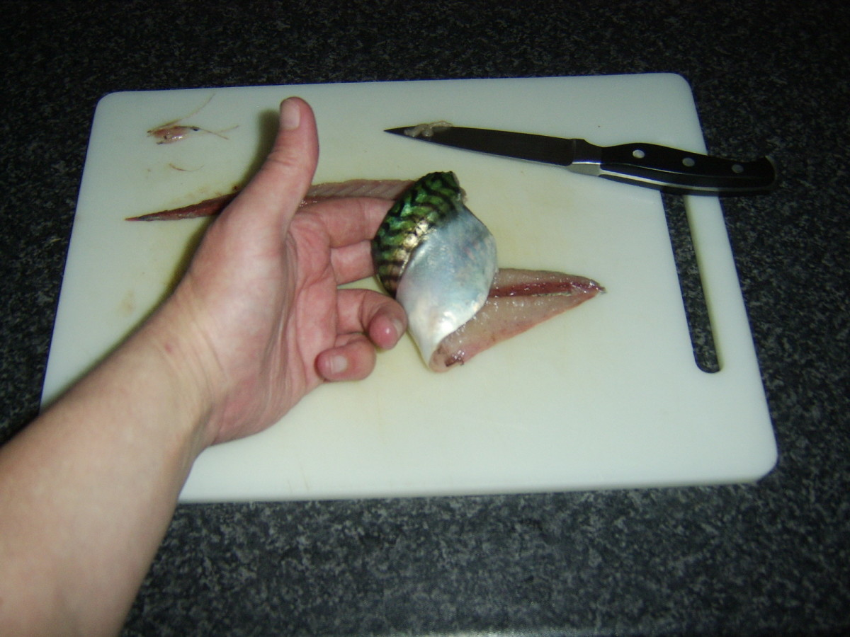 Skin side of mackerel fillet should be undamaged