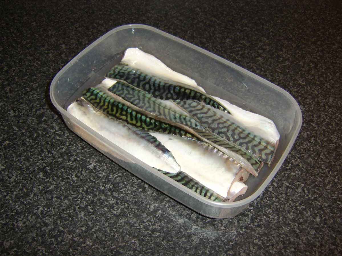 Mackerel fillets not for immediate use should be stored in a plastic container in the refrigerator