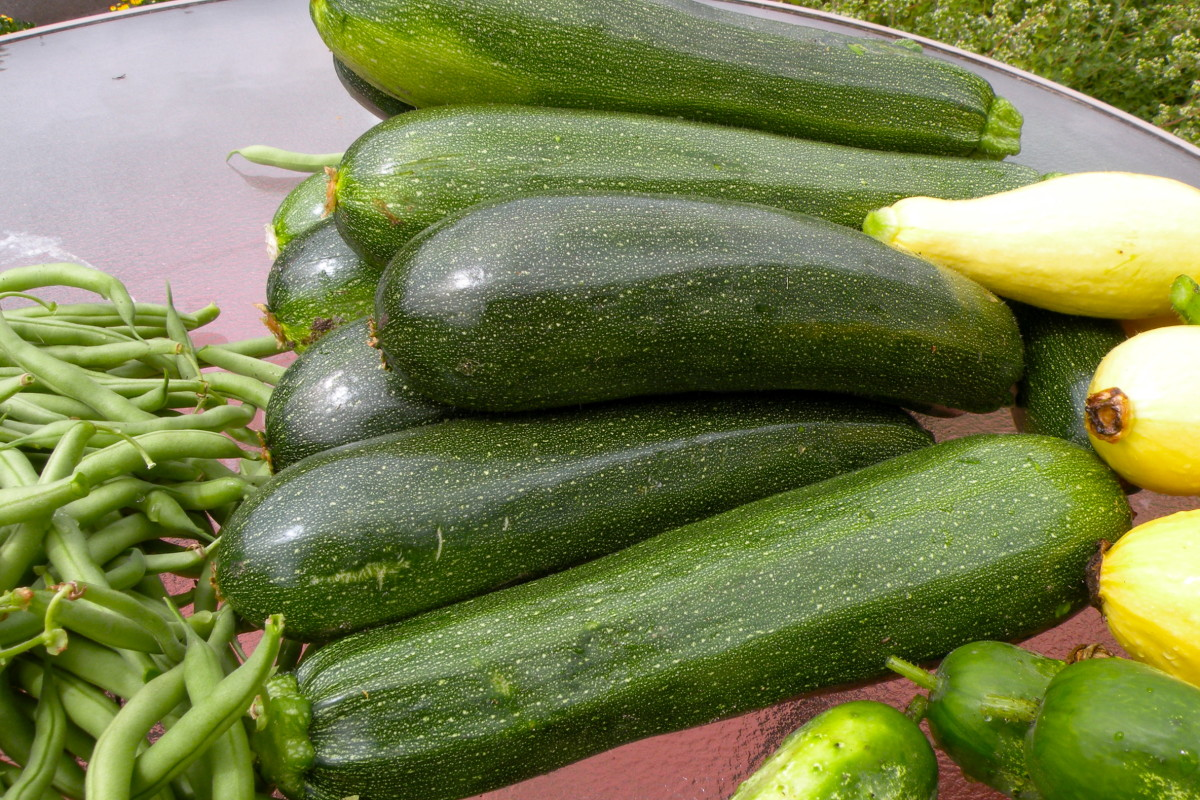 Even a few plants can produce a load of vegetables.