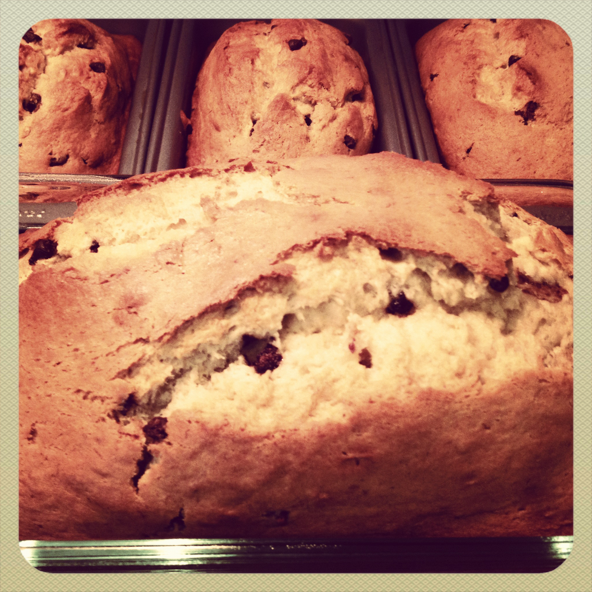 Recipe for Chocolate Chip Banana Bread