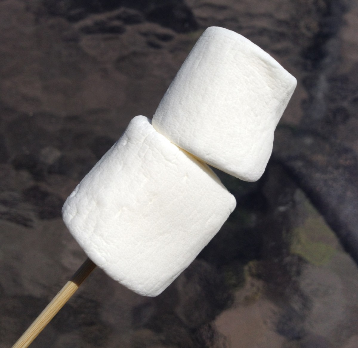 Marshmallows are an important part of s'mores.