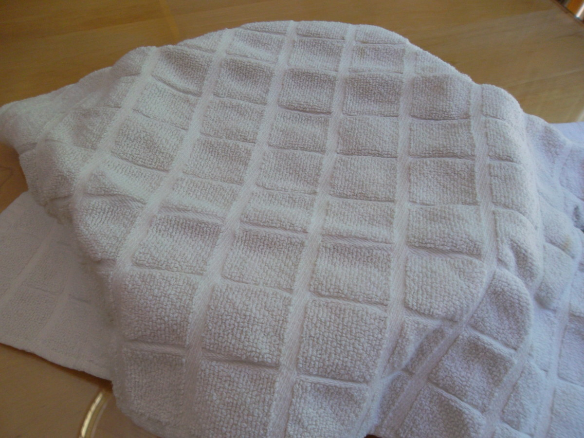 Cover dough with a towel and put in a warm place to rise.