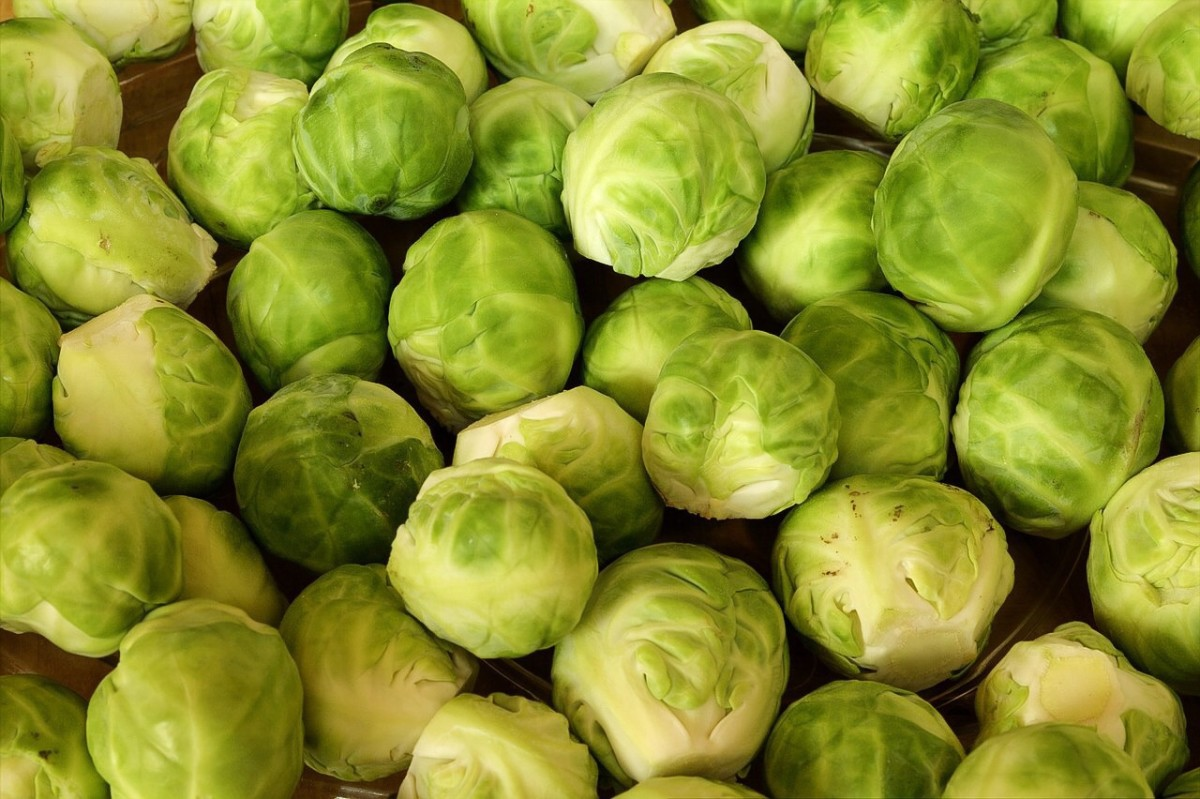 Brussels sprouts are very nutritious vegetables. They can bought in a frozen form so that they can be eaten all year long.