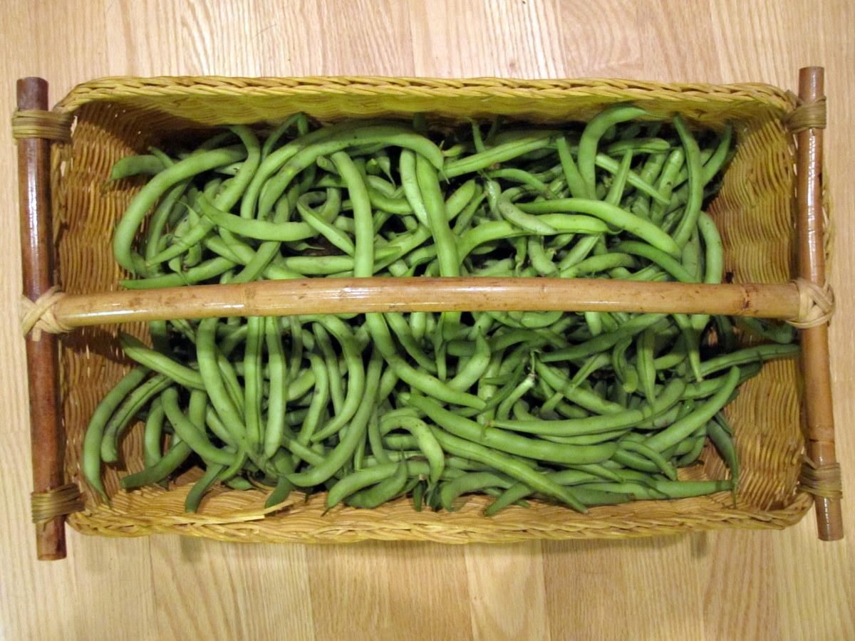 home-freezing-garden-vegetables