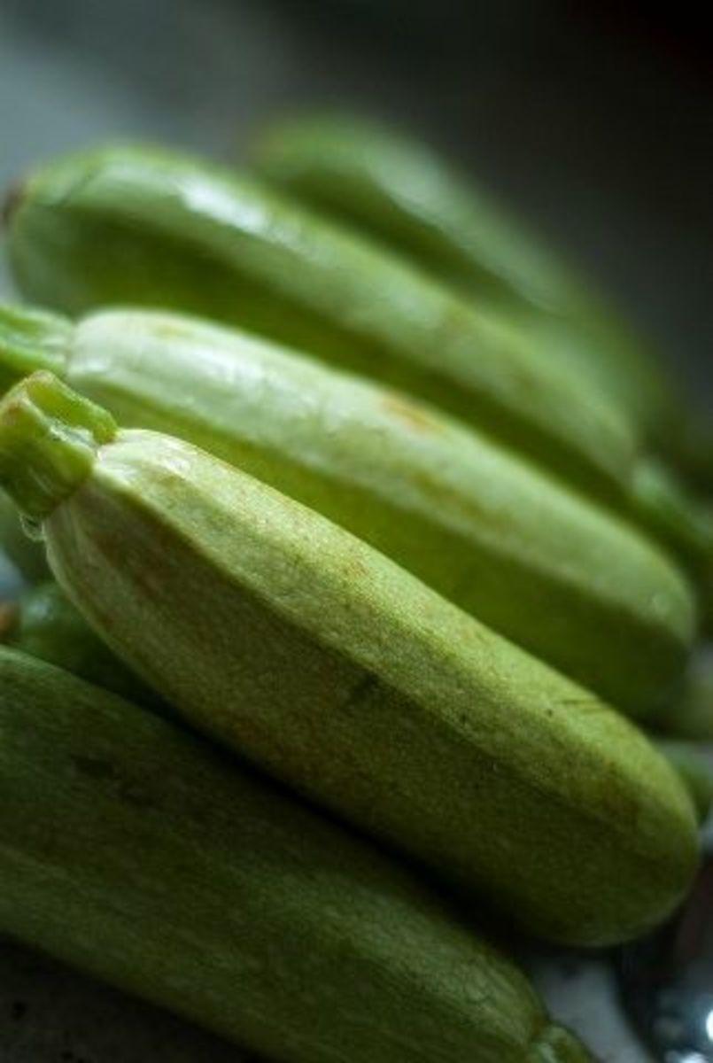 Beautiful zucchini.