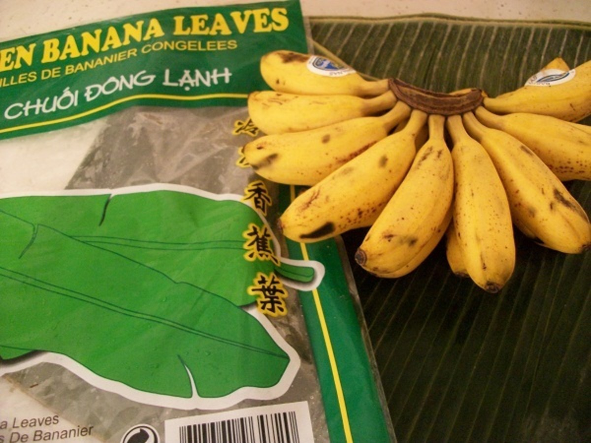 Banana Leaves and Baby Bananas