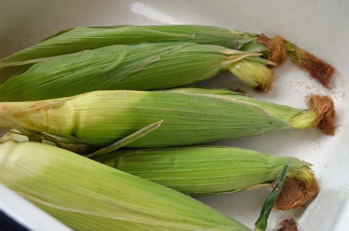 Use fresh and shucked corn.
