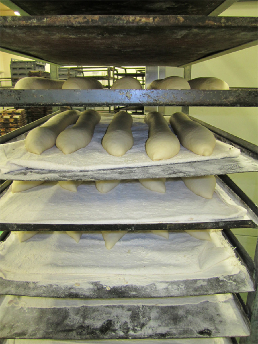 Baguettes ready for slashing and baking.