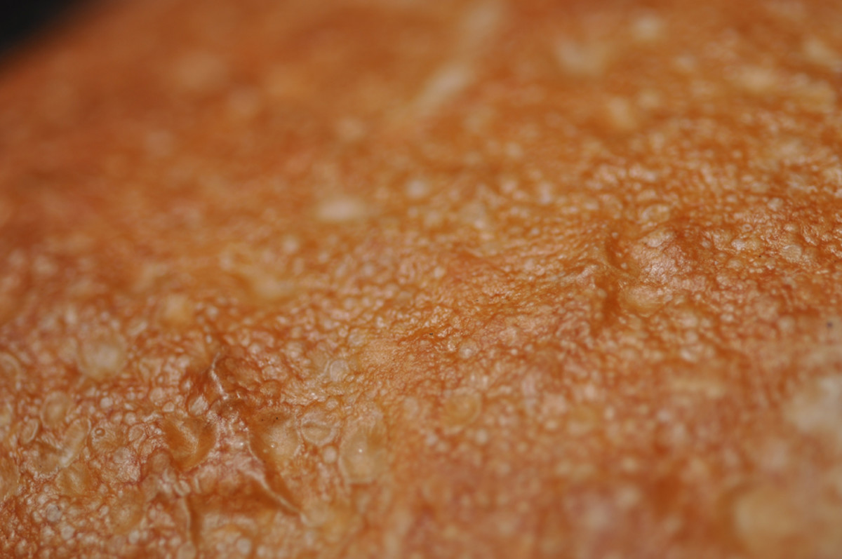 Close up of the crust of the ciabatta loaf. Image: © Siu Ling Hui