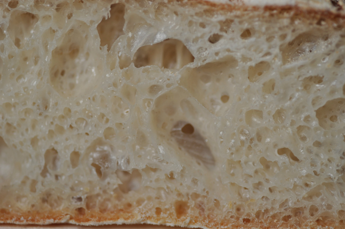 Close view of the crumb of a ciabatta loaf. Image: © Siu Ling Hui