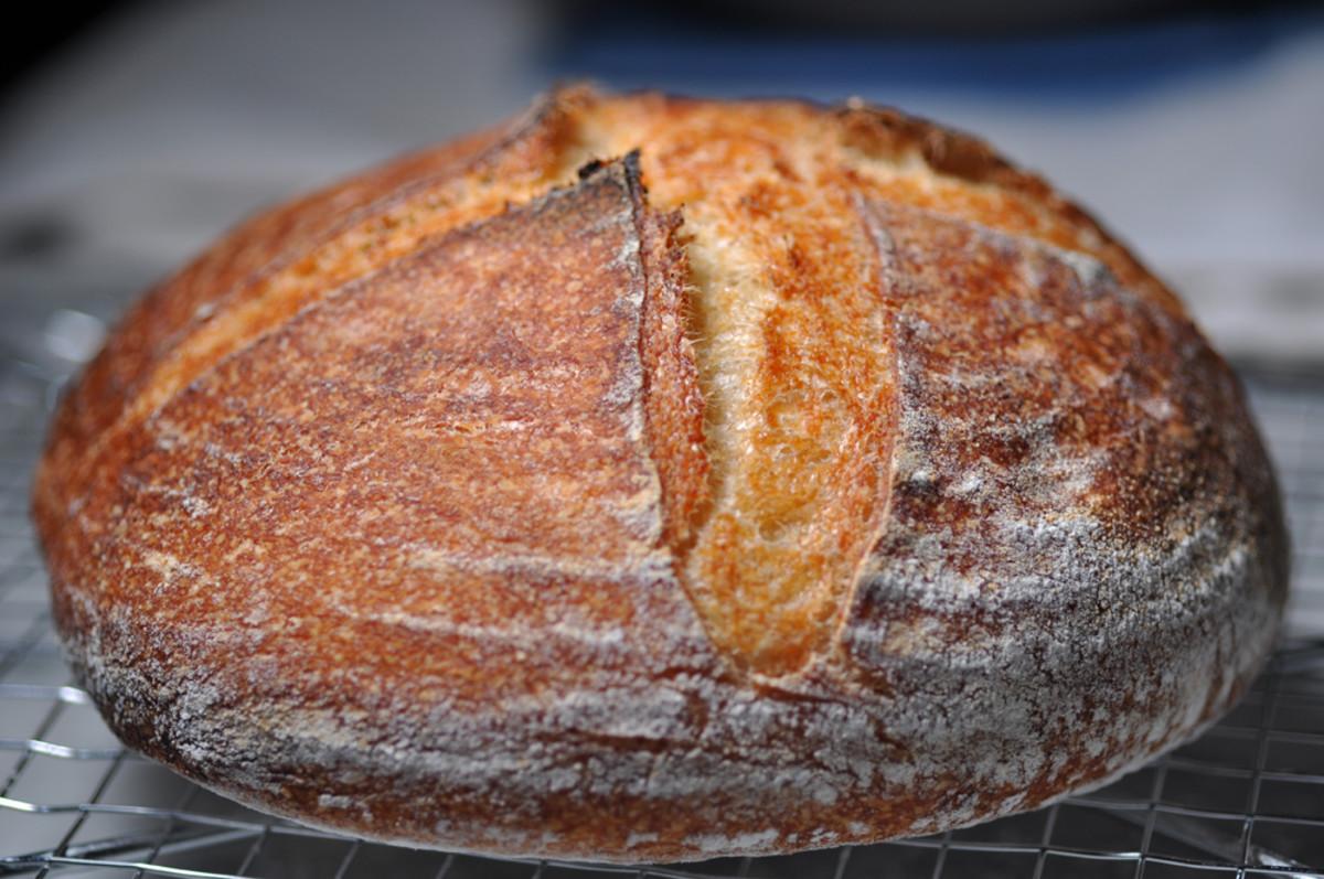100% semola loaf. Image: © Siu Ling Hui