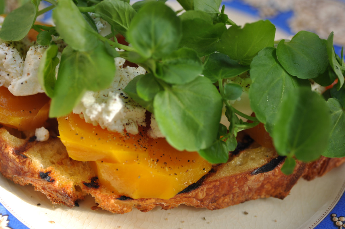 Grilled semola bread with slow roasted orange beetroot, fresh goat's cheese and watercress. Image: © Siu Ling Hui